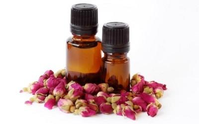 Benefici dell'olio di rosa canina