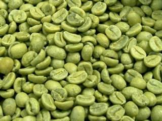 A cosa serve il Caffè Verde