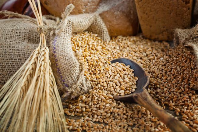 I Cereali (1° Parte)