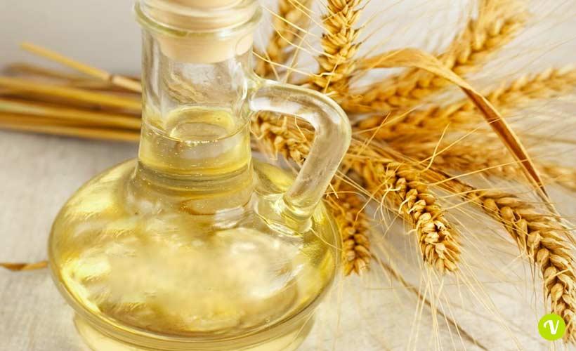 Germe di grano per capelli