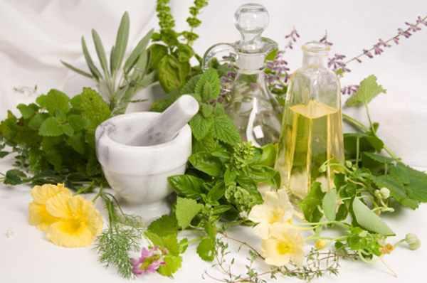 piante per la bellezza