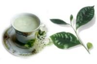 Thè verde per perdere peso