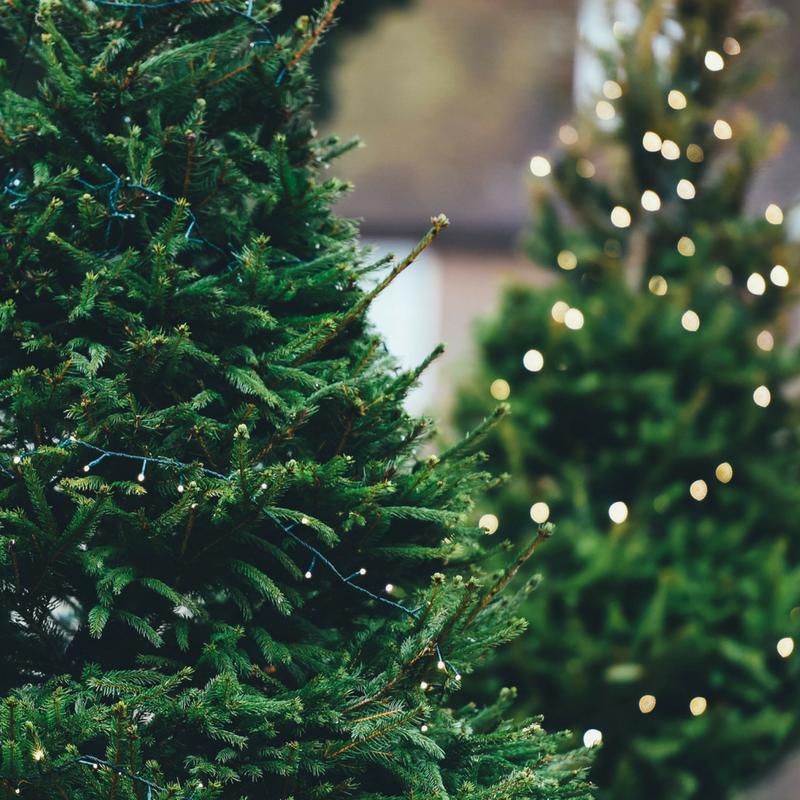 Come abbinare gli addobbi natalizi