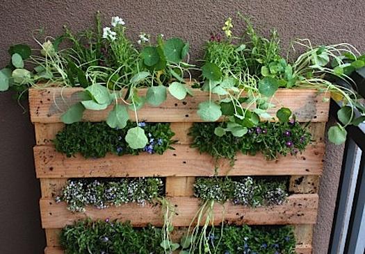 Come realizzare un giardino fatto in casa
