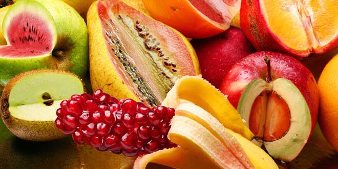 Gli organismo geneticamente modificato (OGM)