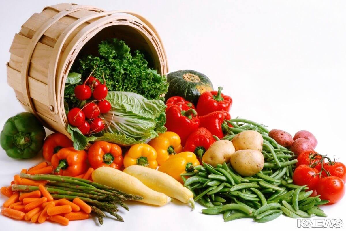 Le gamme  alimentari