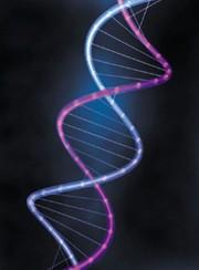 Se l'Armonia è nel DNA