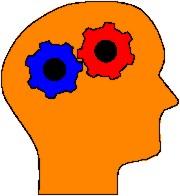 Cosa sono le reti neurali? scienza e curiosità