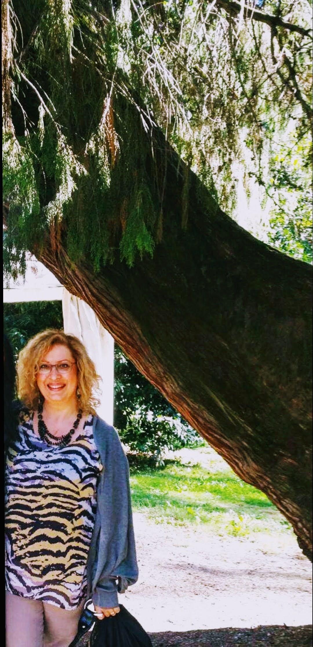 Rita Cerimere presenta Haiku e alchimia