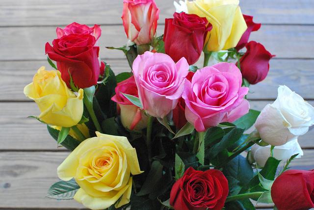 Significato delle rose in base al loro colore