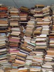 Quel sapore intenso dei libri