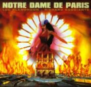 E' solo una storia, è solo Notre Dame