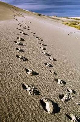 Sulla spiaggia….ma no da sola.