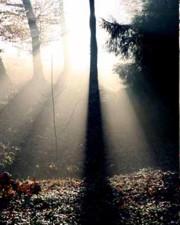 La magia della luce....