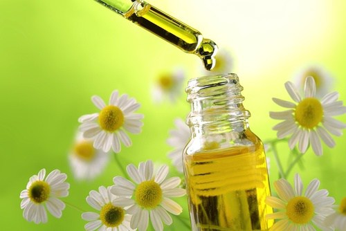 Olio di camomilla: proprietà medicinali e usi