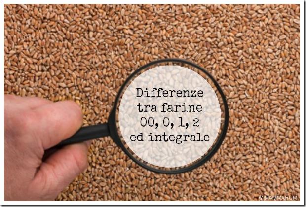 Le farine non sono tutte uguali: troviamo le differenze!
