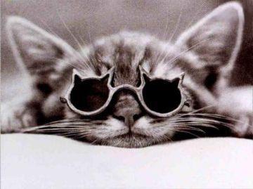 Ruggero Bacone e l'origine degli occhiali