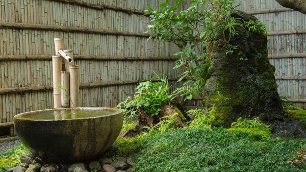 Elementi essenziali in un giardino giapponese