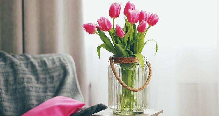 Come far crescere i tulipani in acqua