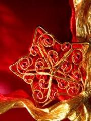 Decorazioni natalizie donnissima - Arance decorazioni natalizie ...
