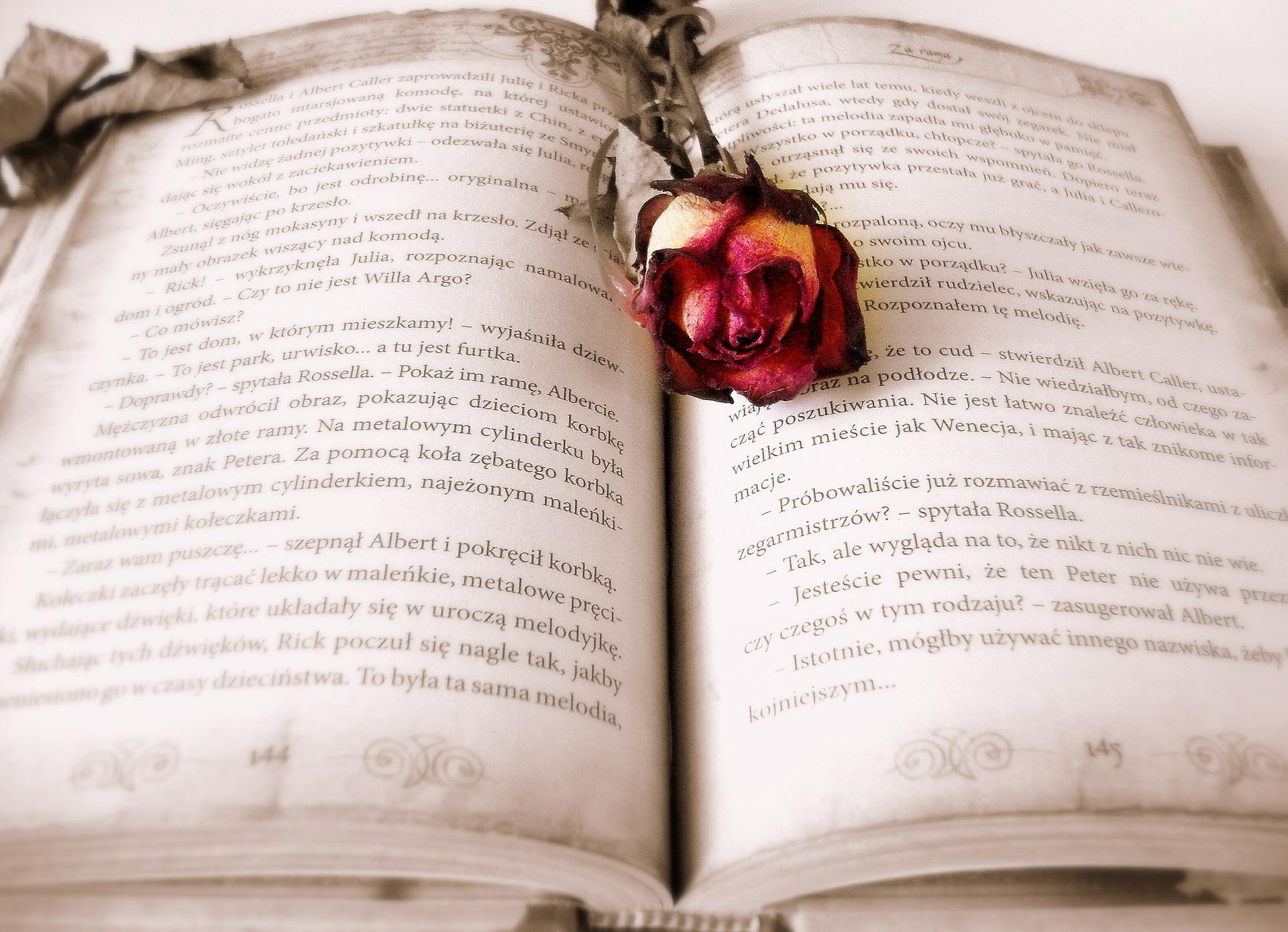 I tre benefici della lettura