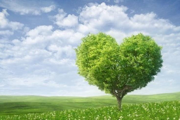 Rispettiamo e Amiamo la natura